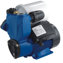 WELFLO WFSM60A Vortex Pump